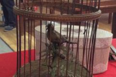 Cage Bontemps oiseau chanteur